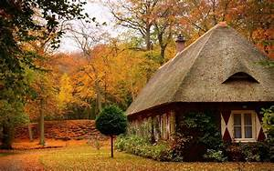 Cosy, Home, Autumn, House