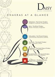 Are Your Chakras Out Of Alignment    U2013 Champion U0026 39 S Insight