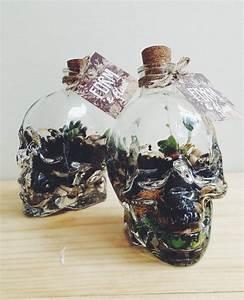 Pflanzen Terrarium Einrichten : skull terrarium living breathing garden pinterest terrarien einrichten und wohnen and ~ Orissabook.com Haus und Dekorationen