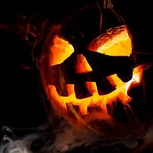 Halloween In Amerika : halloween tioga tours ~ Frokenaadalensverden.com Haus und Dekorationen