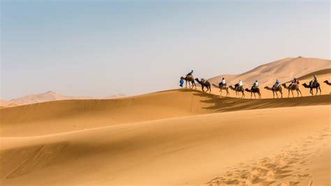 Moroccan Magic What A Sahara Tour Is Really Like