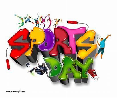 Sports Schools Downloads 3d Colleges Sport Logos