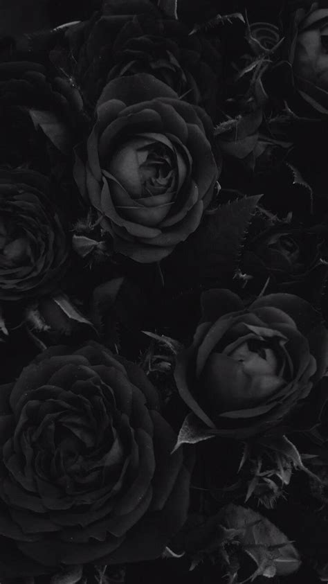 What are you waiting for ? WALLPAPER in 2020 | Black aesthetic wallpaper, Black roses wallpaper, Black phone wallpaper
