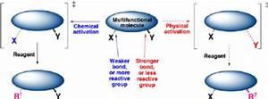 Schematic Representation Of The Complementarity Between