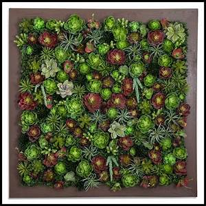 Exotic Indoor Artificial Succulent Walls - Artificial