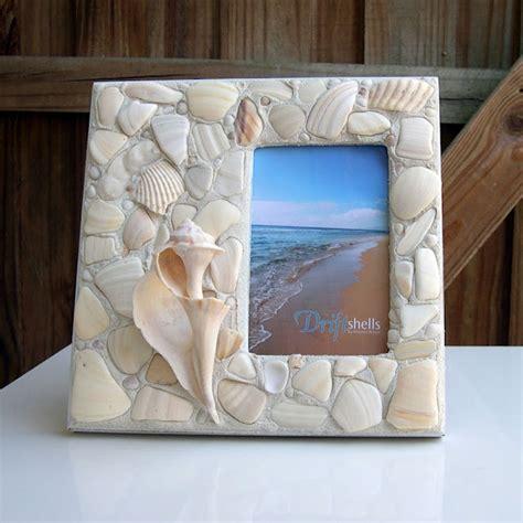 diy projects  seashells