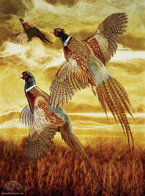 flushed wildlife art pheasant painting
