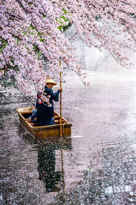 rehoboth remarket   japan japan japan travel