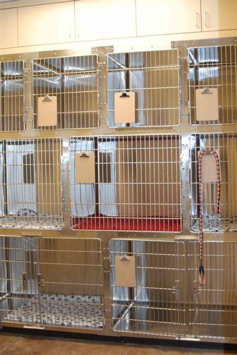 farr west animal hospital pet boarding boarding cat boarding boarding