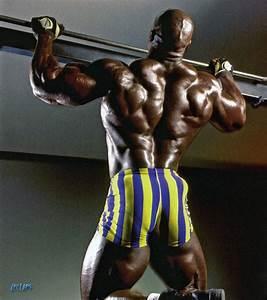 Best Top 8 Arms In Bodybuilding History  U2013 Page 6 Of 8  U2013 Fitness Volt Bodybuilding  U0026 Fitness News