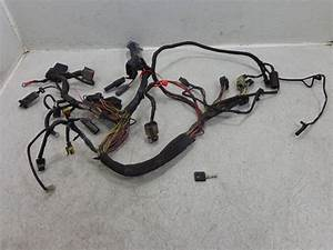 Harley Sportster Wiring Harness : pinwall cycle parts inc your one stop motorcycle ~ A.2002-acura-tl-radio.info Haus und Dekorationen