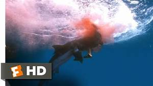 Into the Blue (11/11) Movie CLIP - Shark Saves the Day ...