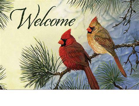 indoor outdoor cardinal couple insert doormat
