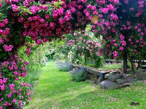 Un Jardin Extraordinaire  ArrÊt Sur Image De Ladymiche