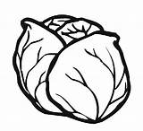 Coloring Cabbage Vegetables Pages Template Kindergarten Fruits Preschool Worksheets Crafts sketch template