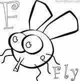 Fly Coloring Coloringfolder sketch template