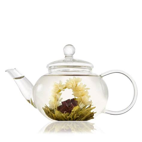 glass teapot filter classic glass teapot with infuser by the teapot