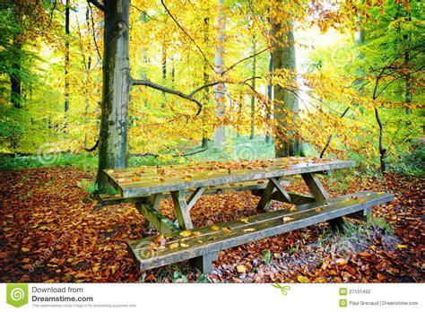 place de pique nique dans la for 234 t d automne photographie stock image 27101492