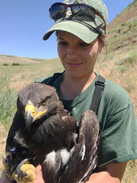 Women in wildlife: The field biologist | The Spokesman-Review