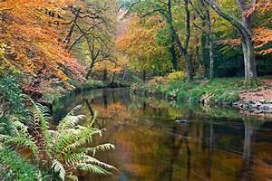 0081 Dartmoor, Devon Caine-Douglas DESIGN & PRINT