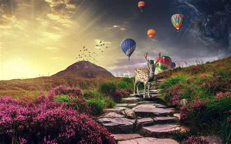 wallpaper deer landscape hot air balloons sunrise