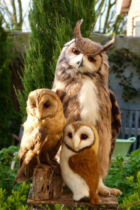 pip s poppies the eagle owl