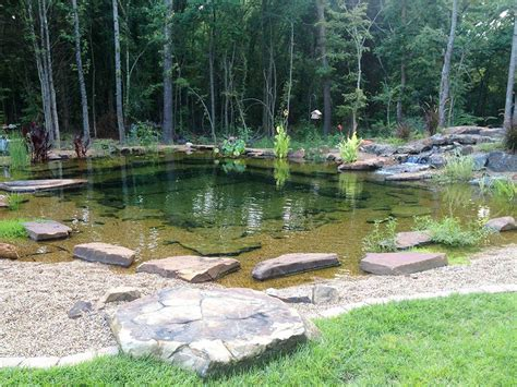 Swimming Pond : Landscape Pond & Waterfall Ideas For Your Backyard