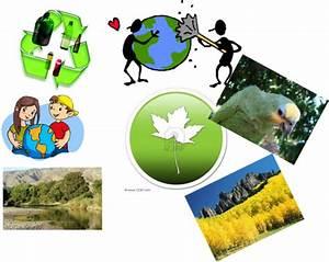 Ecología y educación ambiental: Importancia de la