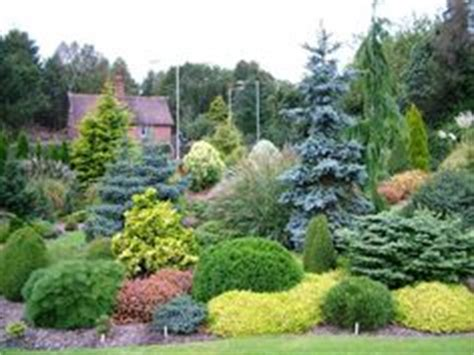 dwarf conifer garden  dewitt ny cny homes pinterest