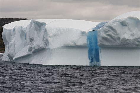 iceberg alley maret  lowongan kerja