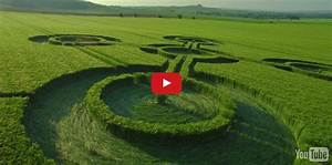 Up Close HD Drone Footage of Four New Crop Circles That ...