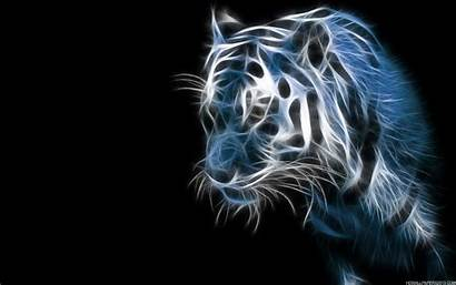 Tiger Special Effects Wallpapers Background Backgrounds Cool