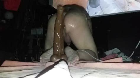 Clydesdale Horse Cock Dildo Bigus Dickus Maximus Gay