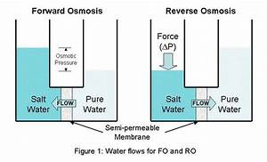 Michael U0026 39 S Water Cooler  Forward Osmosis  A Great Leap