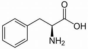 Phenylketonuria - Wikipedia