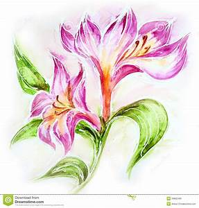 Beautiful Flowers. Watercolor Painting Stock Illustration ...