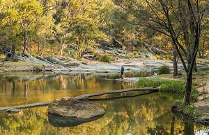 Top Country NSW getaways   NSW National Parks