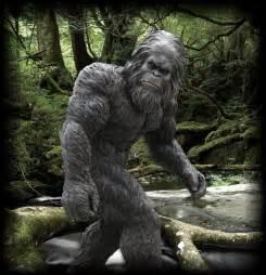 Real Bigfoot Foot