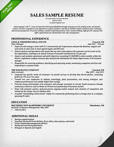 professional sales resume examples recentresumescom With inside sales resume sample