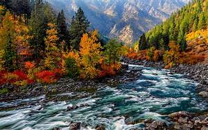Mountain Stream in Autumn Full HD Wallpaper and Background ...