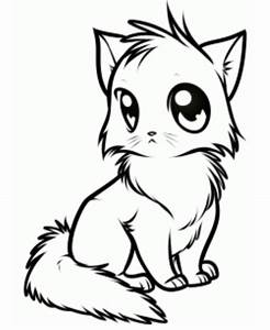 how to draw anime cat picture | Drawing Stuff | Pinterest ...