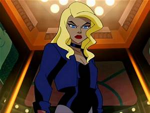 Image - Black Canary.png | DC Animated Universe | Fandom ...