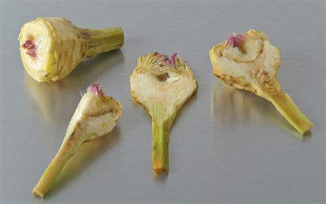 comment cuisiner les artichauts violets en images comment utiliser l artichaut petit violet cuisinons les legumes