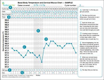 Basal Body Temperature Chart Examples