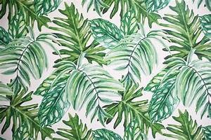 Palm leaf temporary wallpaper daily dose of charm