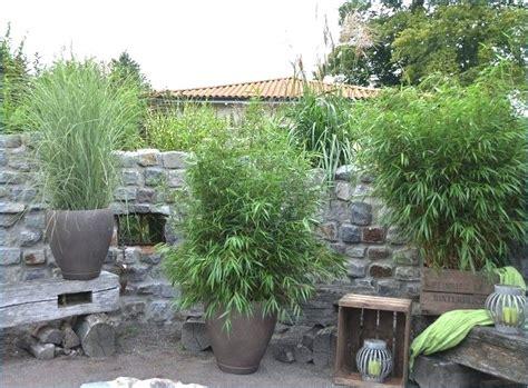 Pflanzen Als Sichtschutz Für Terrasse by Pflanzen Sichtschutz Ganzjahrig Sichtschutz Aus Pflanzen