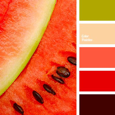 color is what color of watermelon color palette ideas