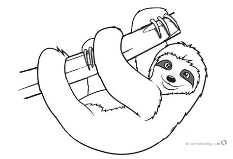 sloth coloring pages realistic  toed sloth