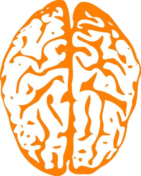 orange brain clip art  clkercom vector clip art