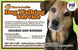 paws to consider dog walkers 127 woodland rd With dog babysitting service
